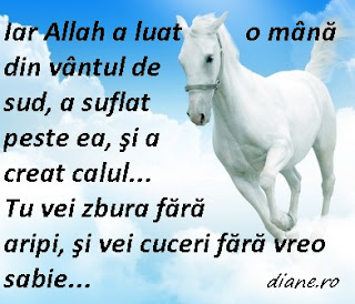 Iar Allah a luat o mână din vântul de sud, a suflat peste ea, şi a creat calul... Tu vei zbura fără aripi, şi vei cuceri fără vreo sabie