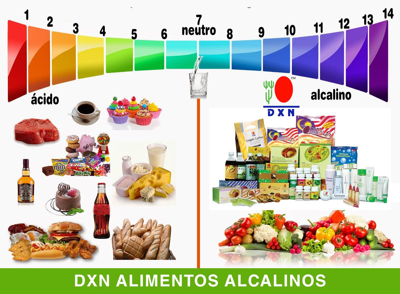 Las recetas dietético una alimentación para el adelgazamiento