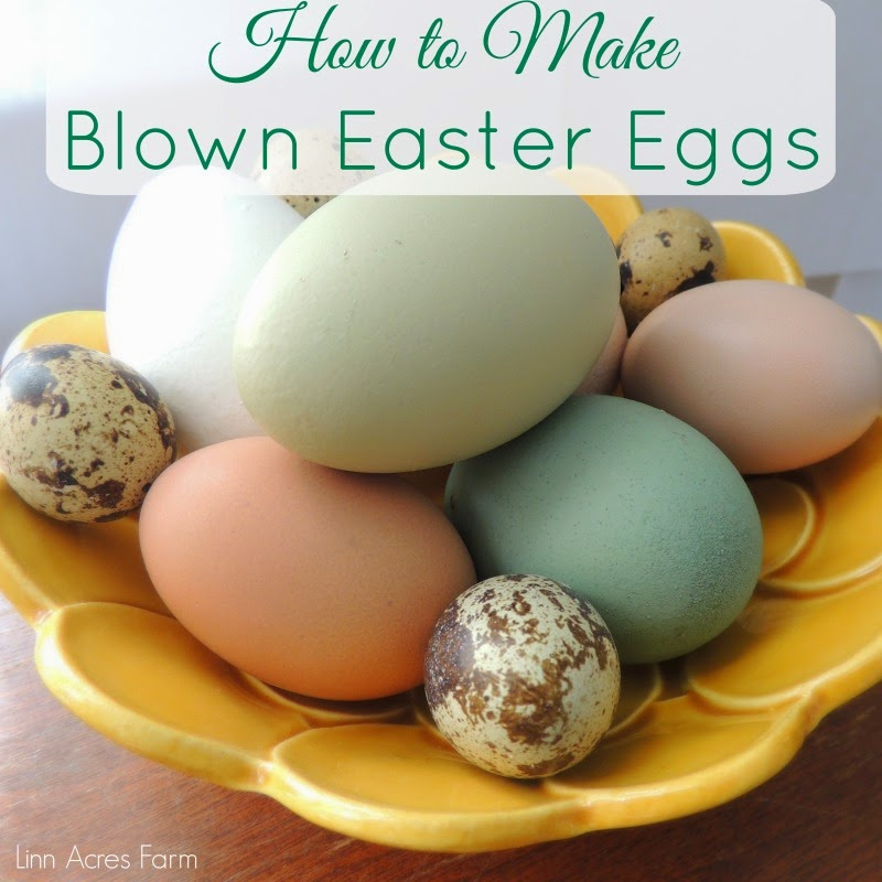 Linn Acres Farm How To Make Blown Easter Egg Decorations