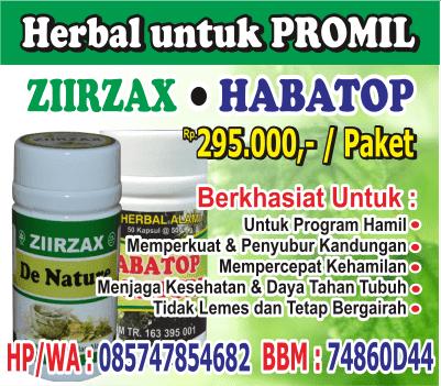paket herbal promil, paket herbal untuk program hamil, herbal memperkuat dan penyubur kandungan, herbal mempercepat proses kehamilan, herbal menjaga kesehatan dan daya tahan tubuh, herbal tidak lemes, herbal tetap bergairah