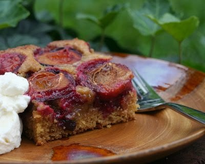 Dimply Plum Cake, sweet Italian plums burrowed into a cardamom-sweet, citrus-scented rustic cake. Recipe, tips, nutrition, WW points at Kitchen Parade.