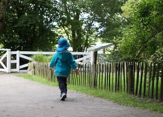 Naturgenuss pur: Der Tierpark Arche Warder. Die Veranstaltungen des Naturgenuss-Festivals laden dazu ein, die wilde Natur Schleswig-Holsteins mit allen Sinnen zu erkunden.
