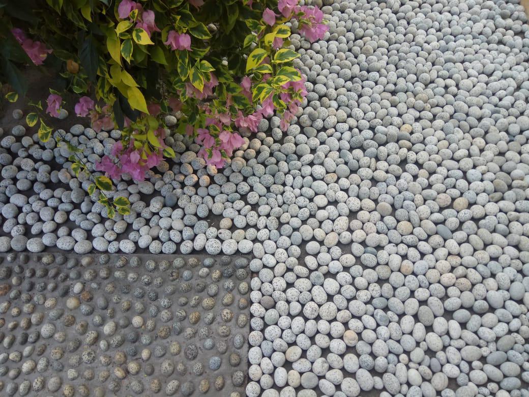 Batu Alam Koral