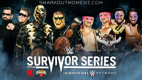 WWE Survivor Series 2014 new tag team champions