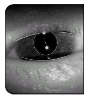 (Penny Khaw, 2002) Figure 6: Optimizing the image