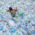 Scientists Have Accidentally Created a Mutant Enzyme That Eats Plastic Waste