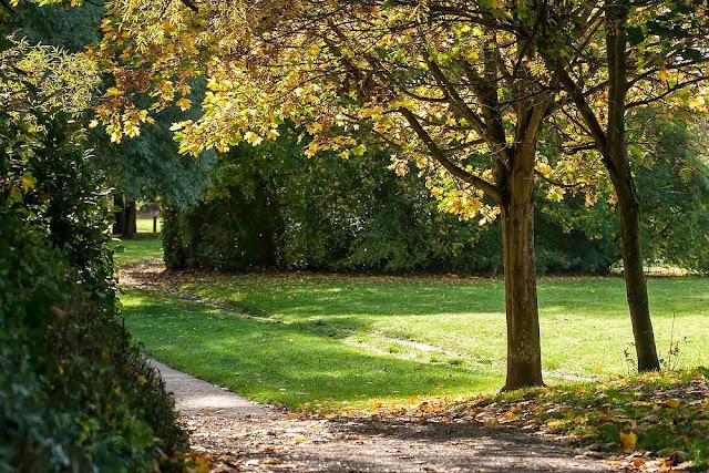 Autumn dappling
