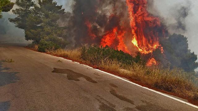 Προσοχή: Υψηλός ο κίνδυνος πυρκαγιάς στην Αργολίδα την Δευτέρα 15 Ιουνίου