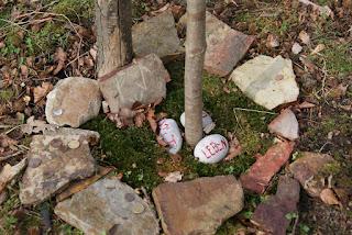 Am Stamm eines jungen Baumes liegen Geldmünzen und kleine Steine mit verschiedenen Aufschriften