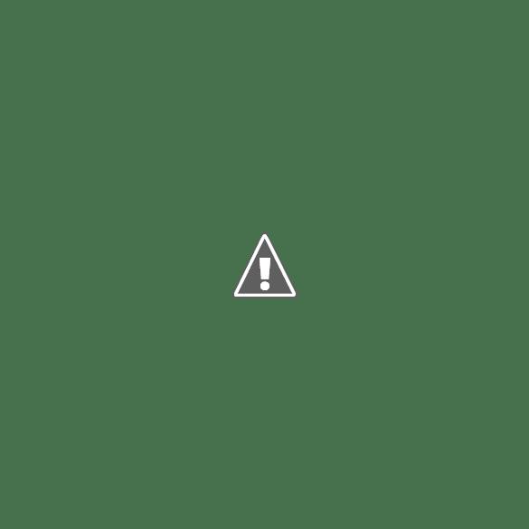 Cara Pasang Sosial Share Show Hide di Blog AMP HTML