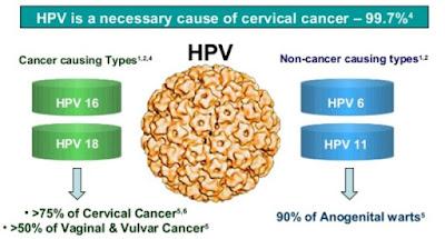 Jenis HPV