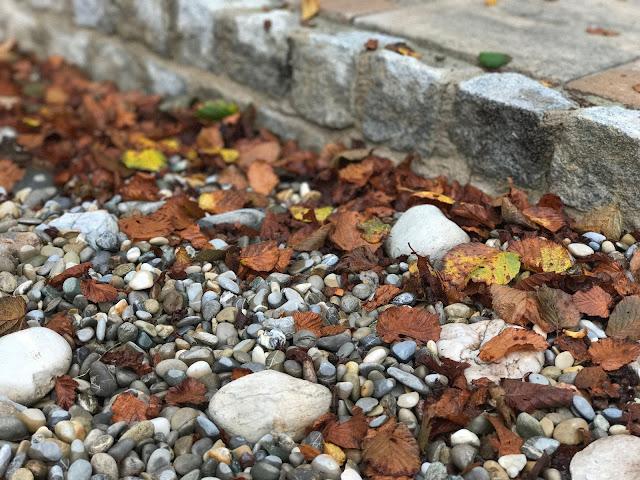 Herbststimmung (c) by Joachim Wenk