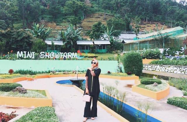 Taman Bunga Mini Showfarm
