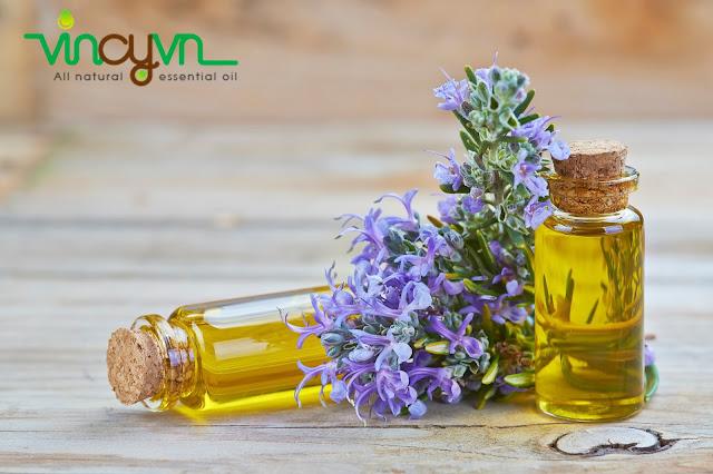 tác dụng của tinh dầu hương thảo