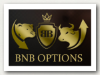 Логотип брокера BNB Options