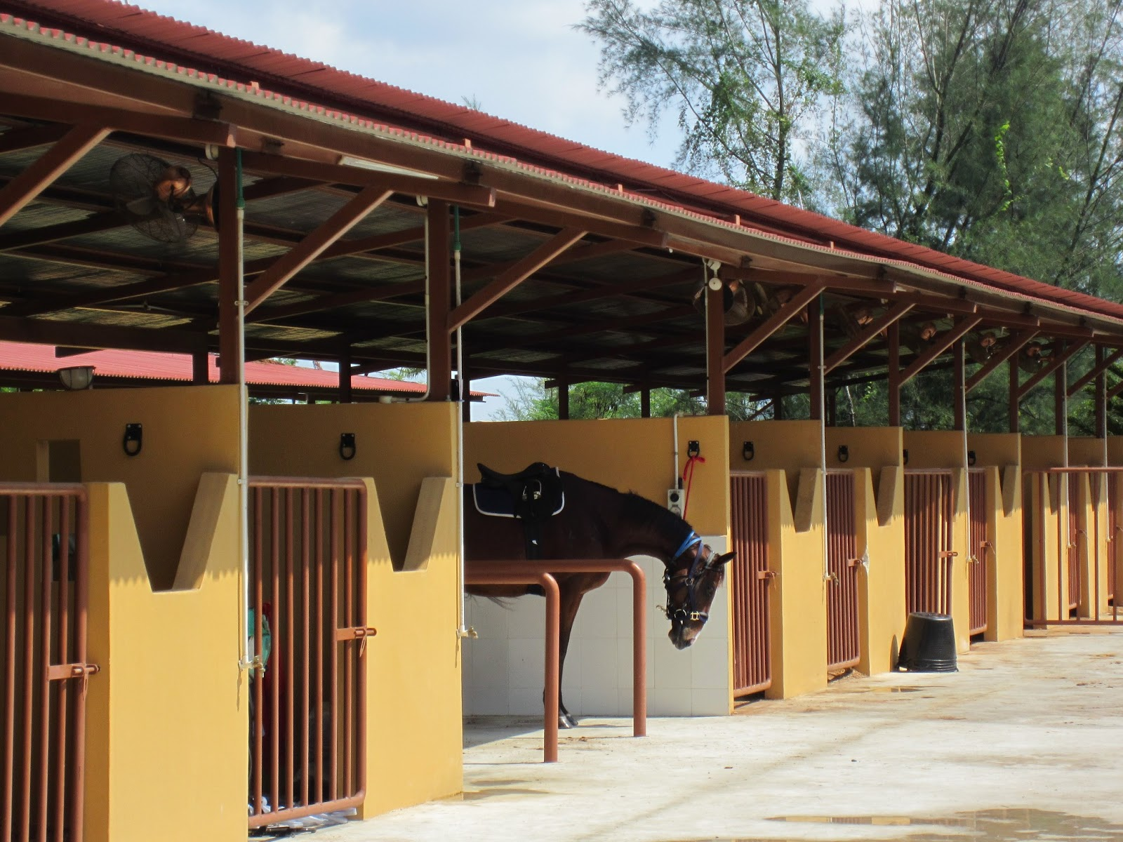 Punggol Stables 3 - interesting places in Singapore