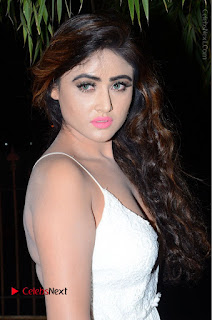 Telugu Actress Model Sony Charishta Pos in White Long Dress at Nanna Nenu Na Boyfriends Audio Launch  0096.JPG