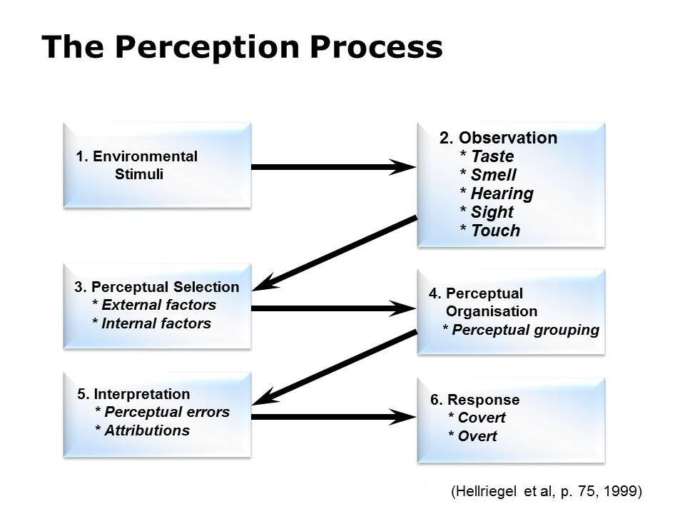 Perceptual process
