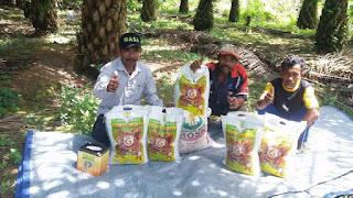 http://www.distributorpupuknasa.com/2017/09/distributor-resmi-pupuk-granule-di-binjai-sumatera-utara.html