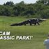 'Pergh, Macam Jurassic Park!'