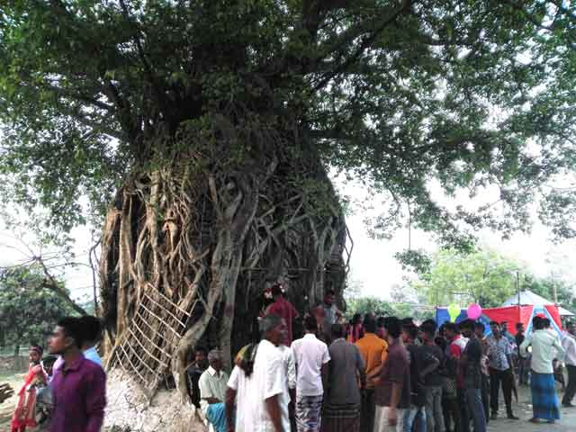 Gambhirir fair of Bengal