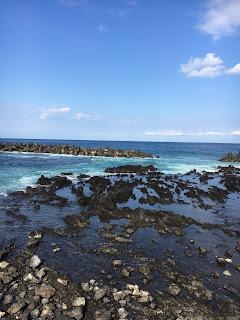 岡田港で見た海②