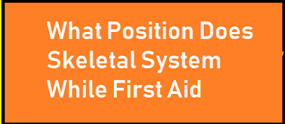 What Position Does Skeletal System While First Aid