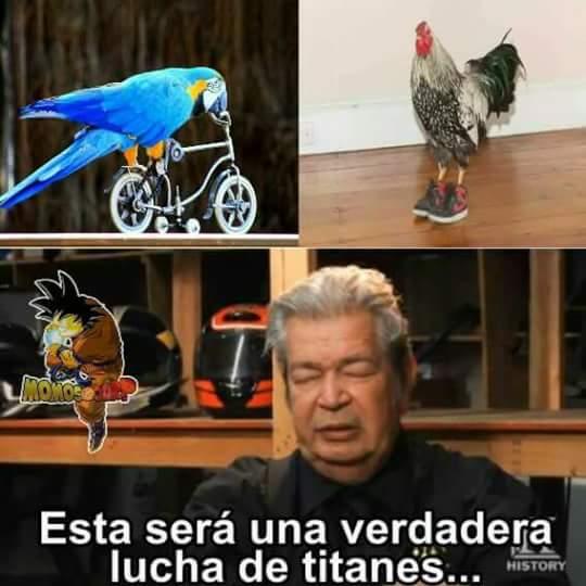 Jordi el nino polla full video