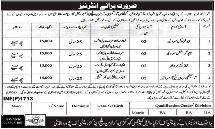 Directorate Of Archaeology And Museum Peshawar Jobs
