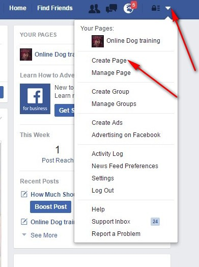 how to get paid with a facebook page