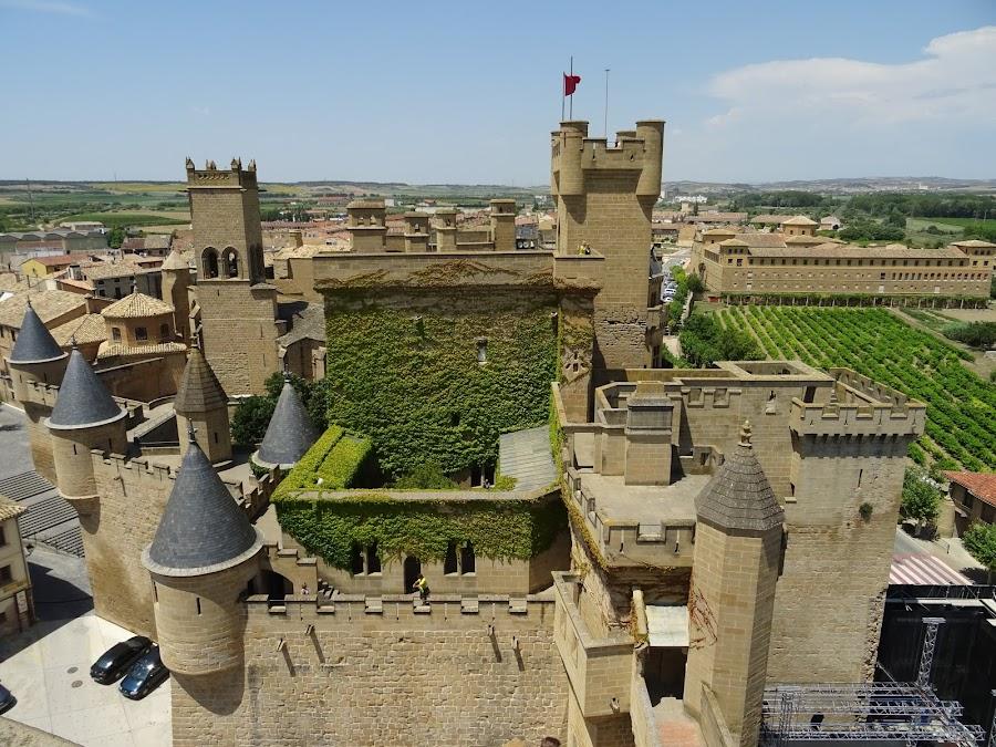Castillo de Olite, Navarra. Desde el torreón más alto.