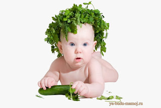 питание: польза зелени