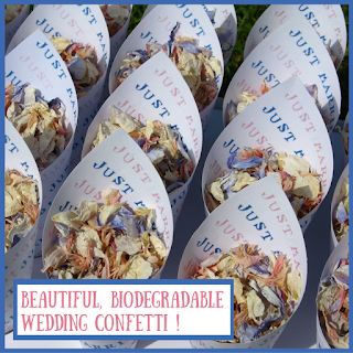 http://www.confettidirect.co.uk/delphiniums.html