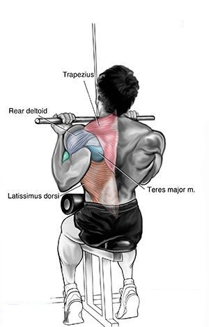 Top Back Workout For A Barn House Door Back