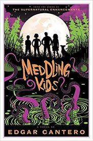 https://www.goodreads.com/book/show/32905343-meddling-kids?ac=1&from_search=true