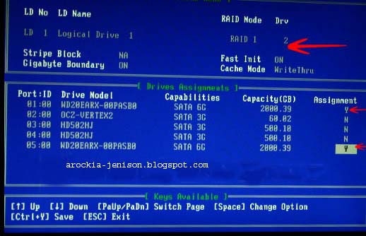 Technical World :: Set Up A RAID 0 Drive (Array) in Windows