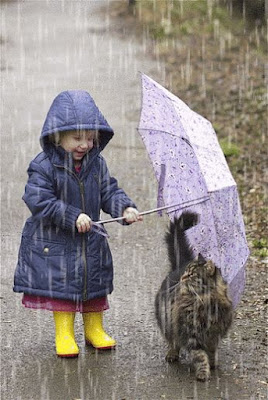 Tierna imagen de nena protegiendo a su gatito de la lluvia