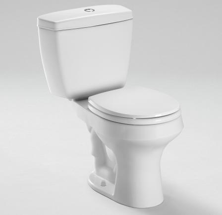 Toto Rowan Dual Flush Toilet Review
