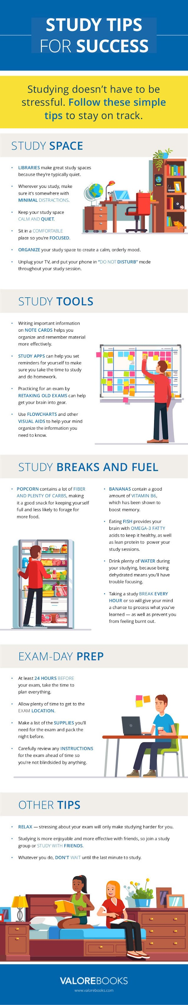 The Best Tips For Successful Studying Routine - Infographic