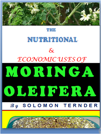 "alt=""make money online with moringa"""