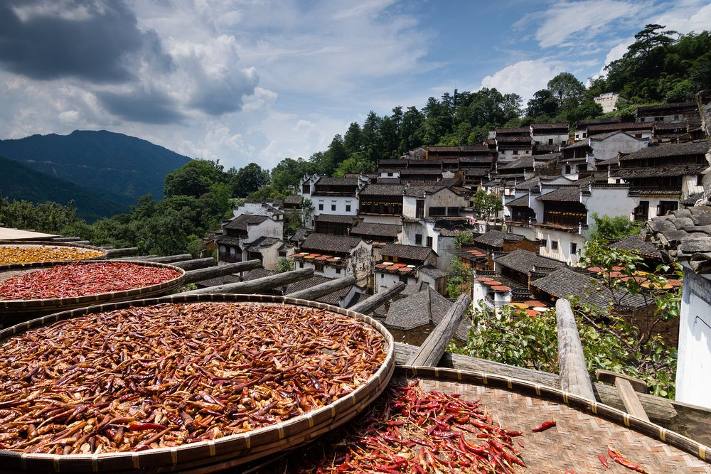 Fruit Drying in Huangling