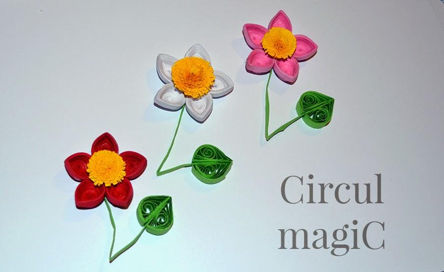 flori quilling hartie circul magic