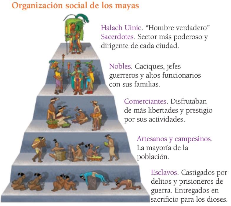Imágenes educativas para plataforma UEBF: Organización