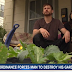 Judge Rules Government Can Ban Vegetable Gardens Because They're 'Ugly'