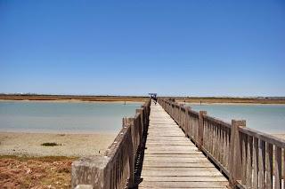 Foto de los Toruños. Destino Cádiz.