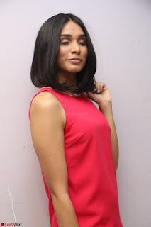 Spatika Surapaneni in Red Tight Dress at FBB Miss India 2017 finalists at Telangana auditions Feb 2017 (61).JPG