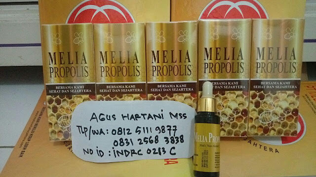 Melia propolis asli, Melia sehat sejahtera, produk asli propolisa, ciri-ciri propolis asli