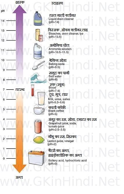 PH मान ( pH value ) | Important exam List in Hindi