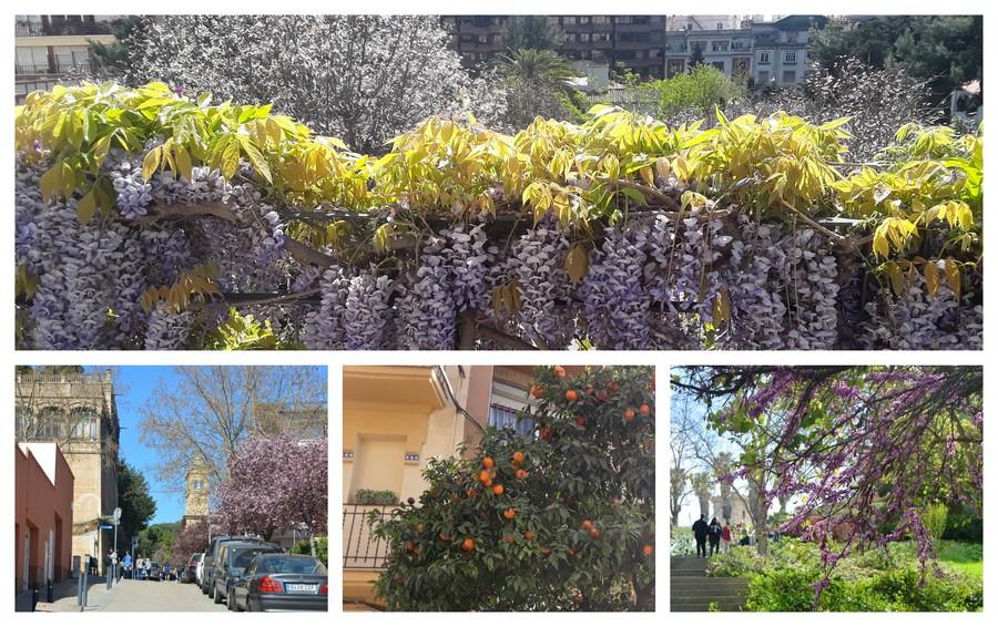 rues fleuries à Barcelone