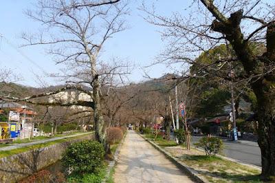 10D9N Spring Japan Trip: Philosopher's Path, Kyoto